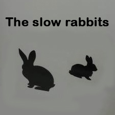 The Slow rabbits. Estudio Goya
